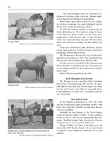 Page 50 of Horses, Harness and Homesteads - The History of Draft Horses in Saskatchewan