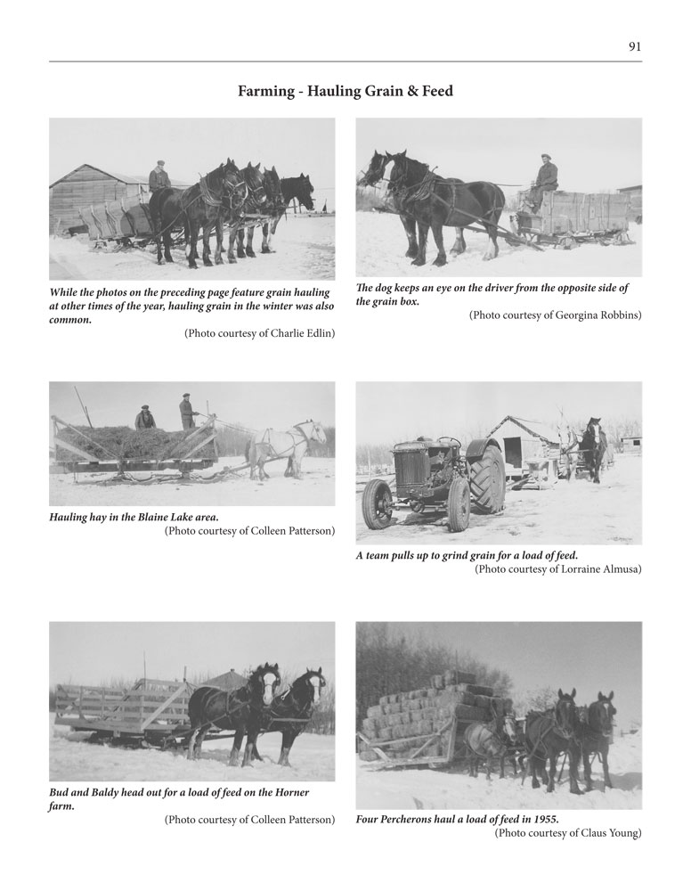 Page 91 of Horses, Harness and Homesteads