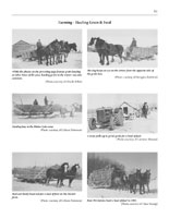 Page 91 of Horses, Harness and Homesteads - The History of Draft Horses in Saskatchewan